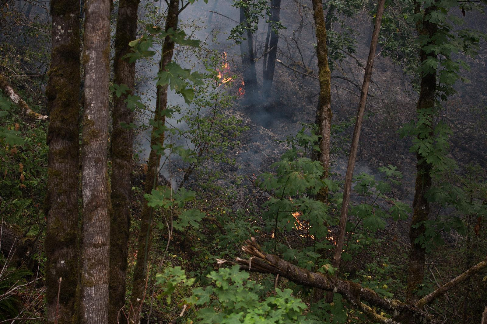 Local and state officials had their first look at the damage left behind from the Eagle Creek Fire Wednesday, September 6, 2017. The fire is burning in the Columbia River Gorge. Photo courtesy Multnomah County Communications