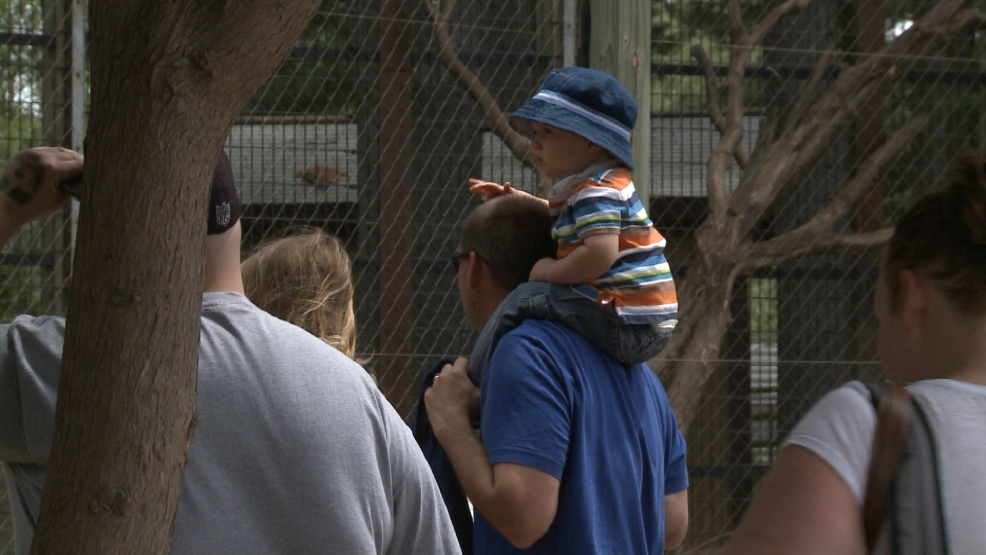 Some dads are celebrating Father's Day at the NEW Zoo
