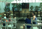 Children and Adults Watching An Educational Video at Krohn Conservatory.jpg