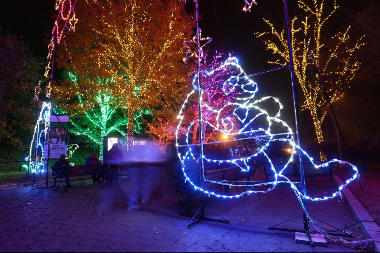 Sure, Zoolights is no Griswold house, but it sure is pretty! (Image: Amanda Andrade-Rhoades/ DC Refined)