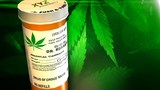 Ohioans buying Michigan medical pot ahead of rules being set