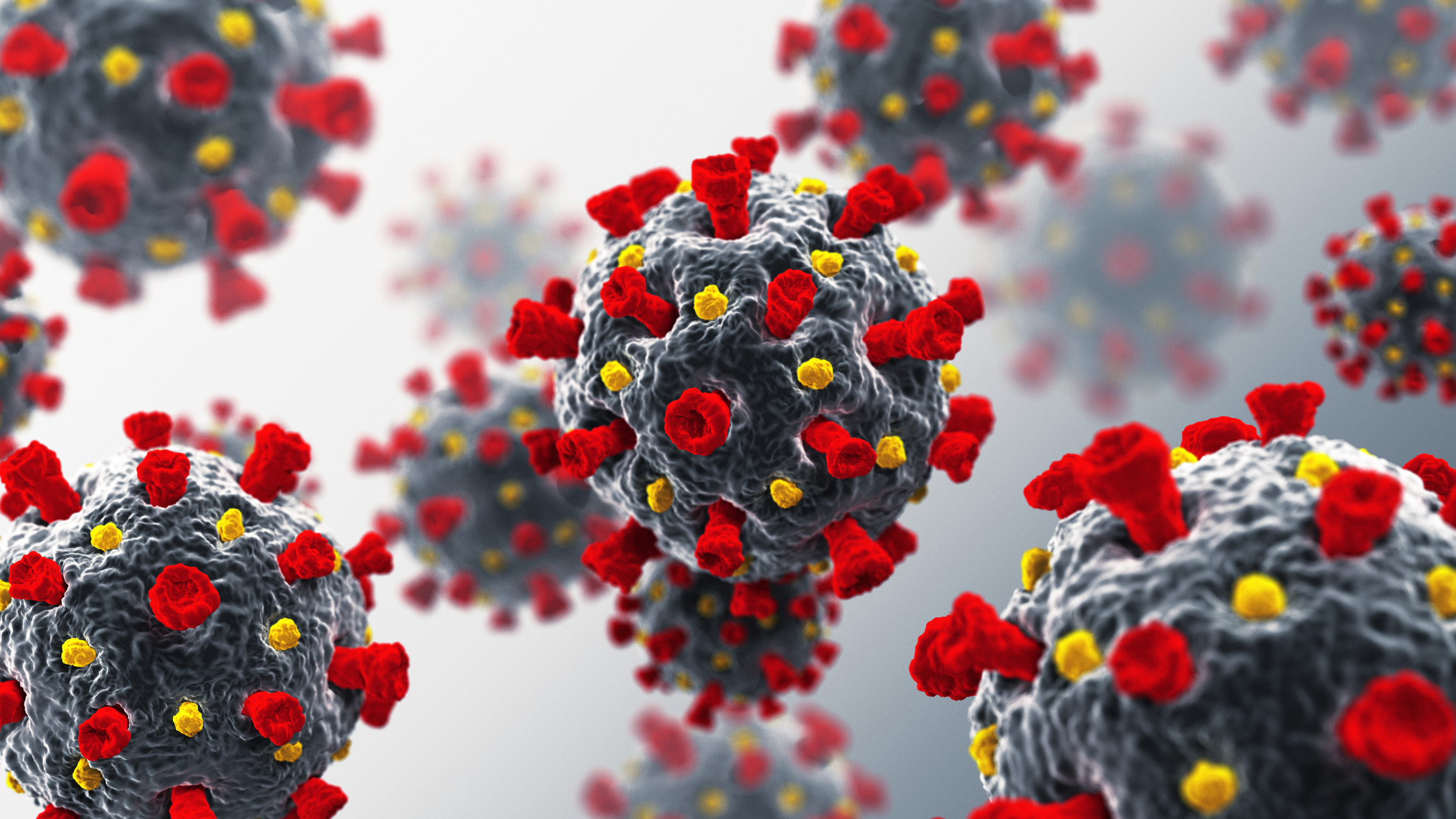 A 3D rendering of the COVID-19 virus. (Image: Getty Images)