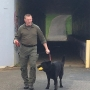 WCU hosts nationwide cadaver dog training program