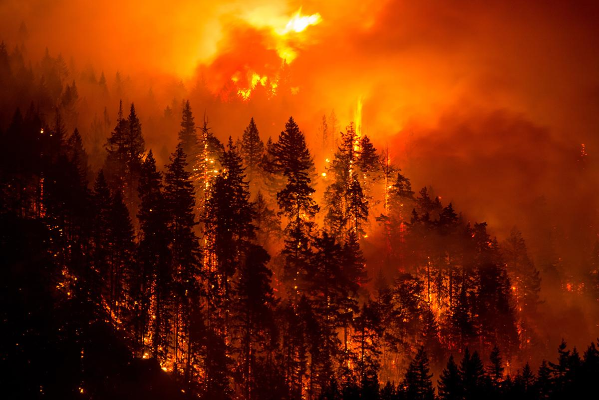 Eagle Creek Fire - Photo by Tristan Fortsch - 5.jpg