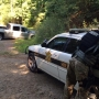 High-speed, 69-mile chase down Parkway ends in Asheville