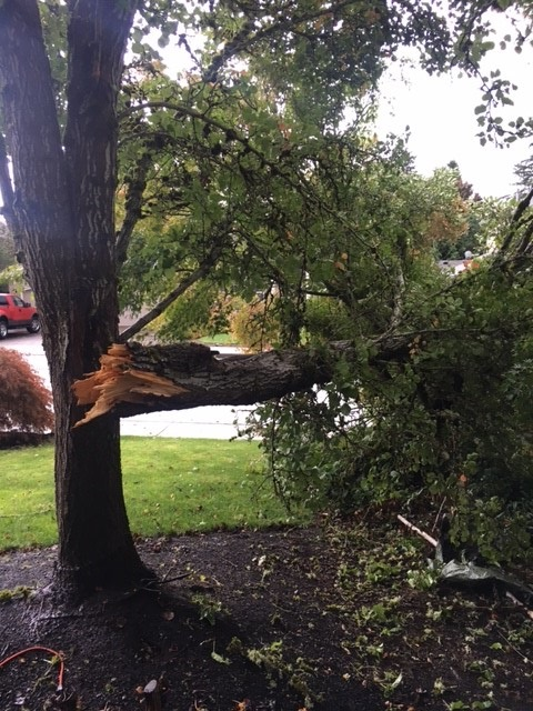 NWS confirmed there was an EF-0 north of Vancouver Thursday, Oct. 12, 2017. Photo courtesy Kari Weller{&amp;nbsp;}<p></p>