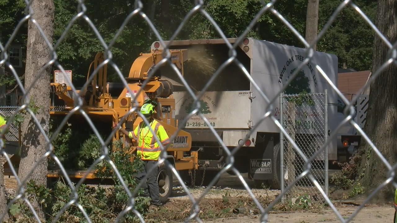 Purple Line tree trimming underway in Montgomery County (ABC7)