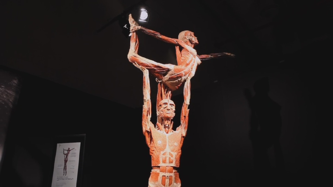 body worlds exhibit essay In this sort of dualism, mind and body are  locke suggests that the mind cannot exhibit temporal discontinuity  essay concerning human understanding.