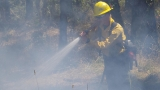 Firefighters save structures from 2-acre grass fire