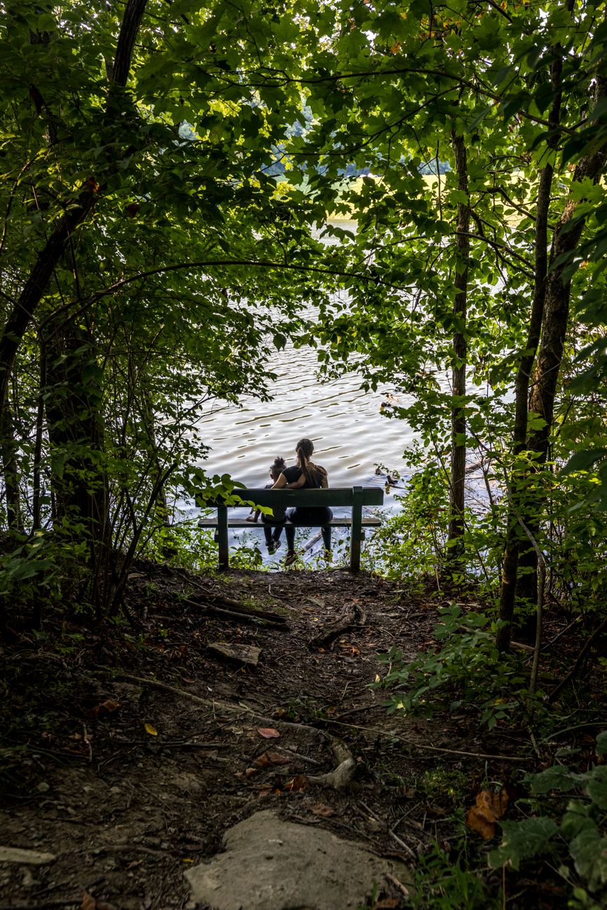 There's a total of 8.4 miles of dirt and gravel hiking trails through Doe Run. The Doe Run Lake Trail is 2.8 miles and circles the lake. Visitors can have lunch in one of the many secluded picnic areas throughout the park. / Image: Catherine Viox // Published: 9.2.20