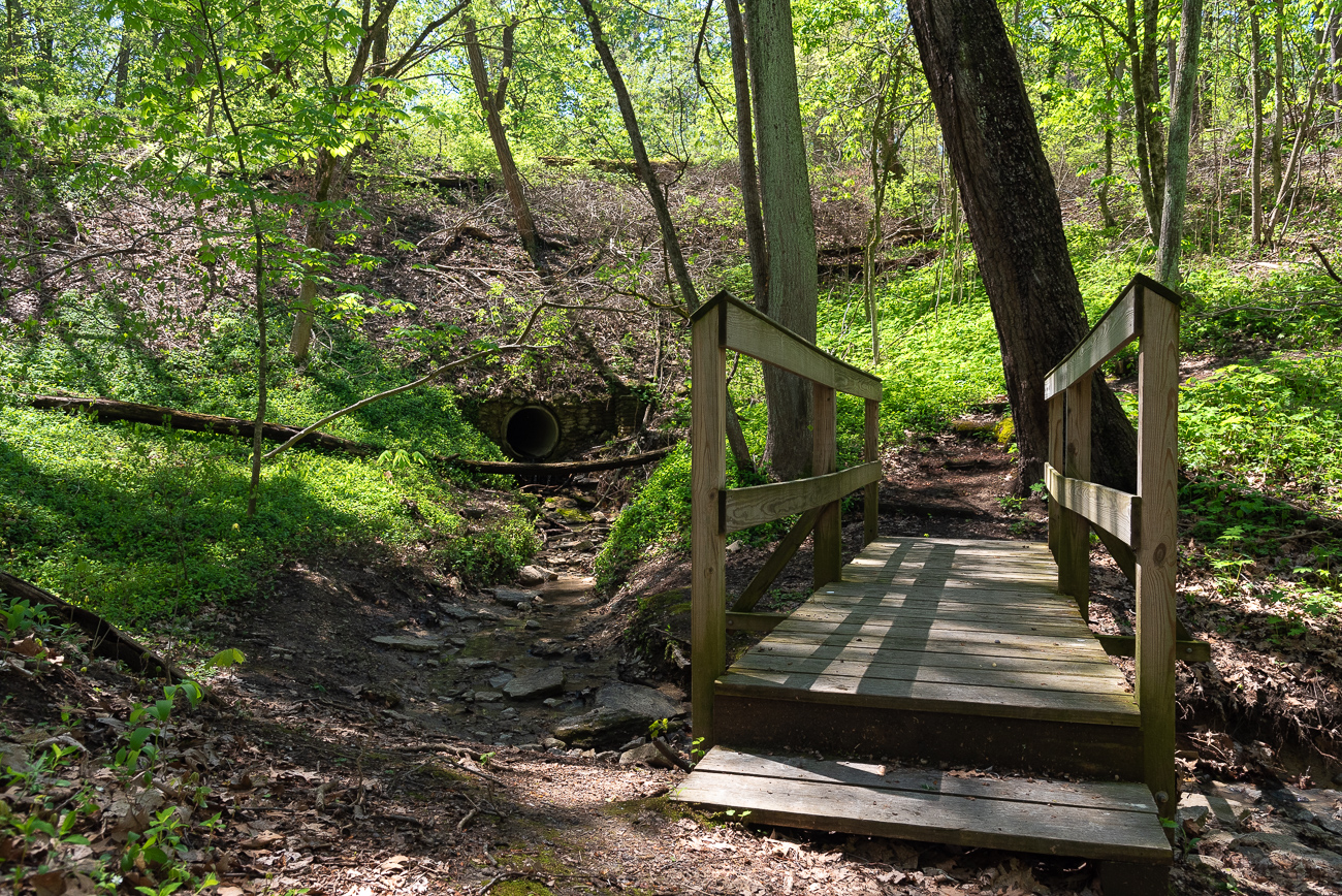 Since it's small in size and relatively hidden when compared to the more popular Smale Parks and Mt. Airy Forests of Cincinnati, Avon Woods feels like a private place to breathe fresh air, tread some trails, and enjoy the sights and sounds of nature. / Image: Phil Armstrong, Cincinnati Refined // Published: 4.25.19