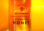 P-SOURWOOD HONEY.transfer_frame_254.jpg
