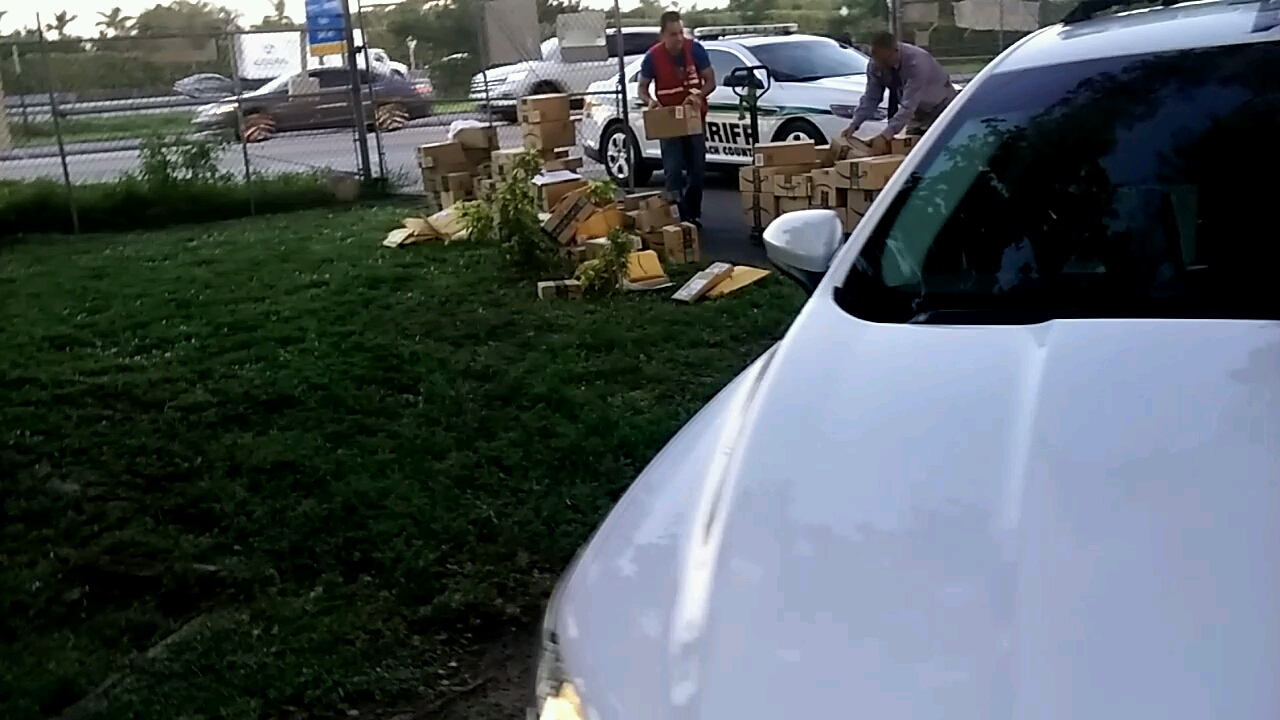 Tri-County Animal Rescue picks up packages that fell out the back of a mail truck in Boca Raton. (Tri-County Animal Rescue)