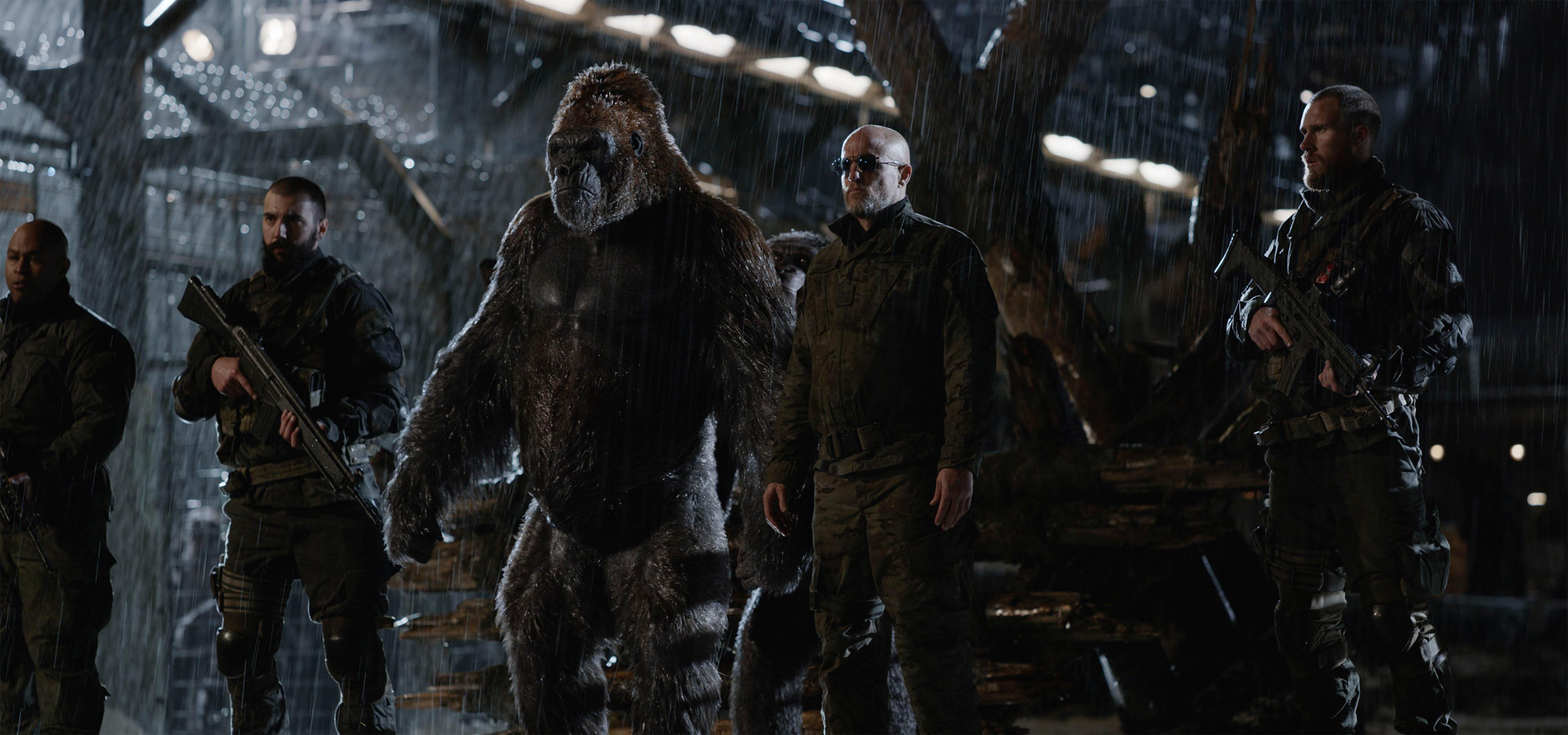 "Woody Harrelson stars in Twentieth Century Fox's ""War for the Planet of the Apes."""