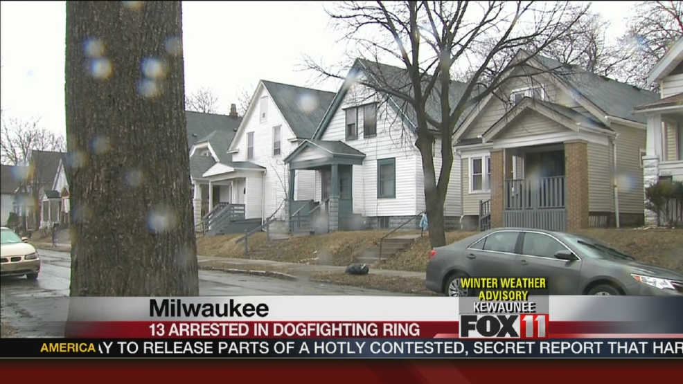 13 arrested in Milwaukee dogfighting investigation