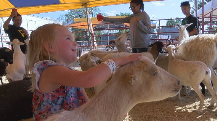 Children enjoy the petting zoo at the Tri-State Fair. (KVII, Niccole Caan)
