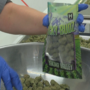 Local pot business says legal battle with county could change statewide cannabis industry
