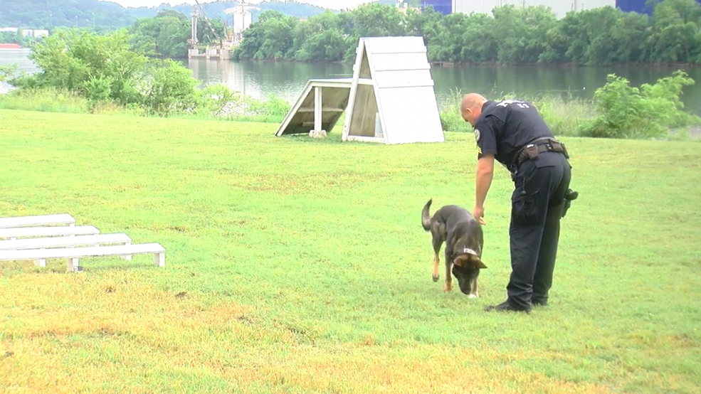 Estados unidos de Policía de la Asociación Canina viene a Chattanooga ... - WTVC 1