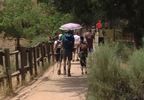 KUTV Zion national park trail hikers 072017.JPG