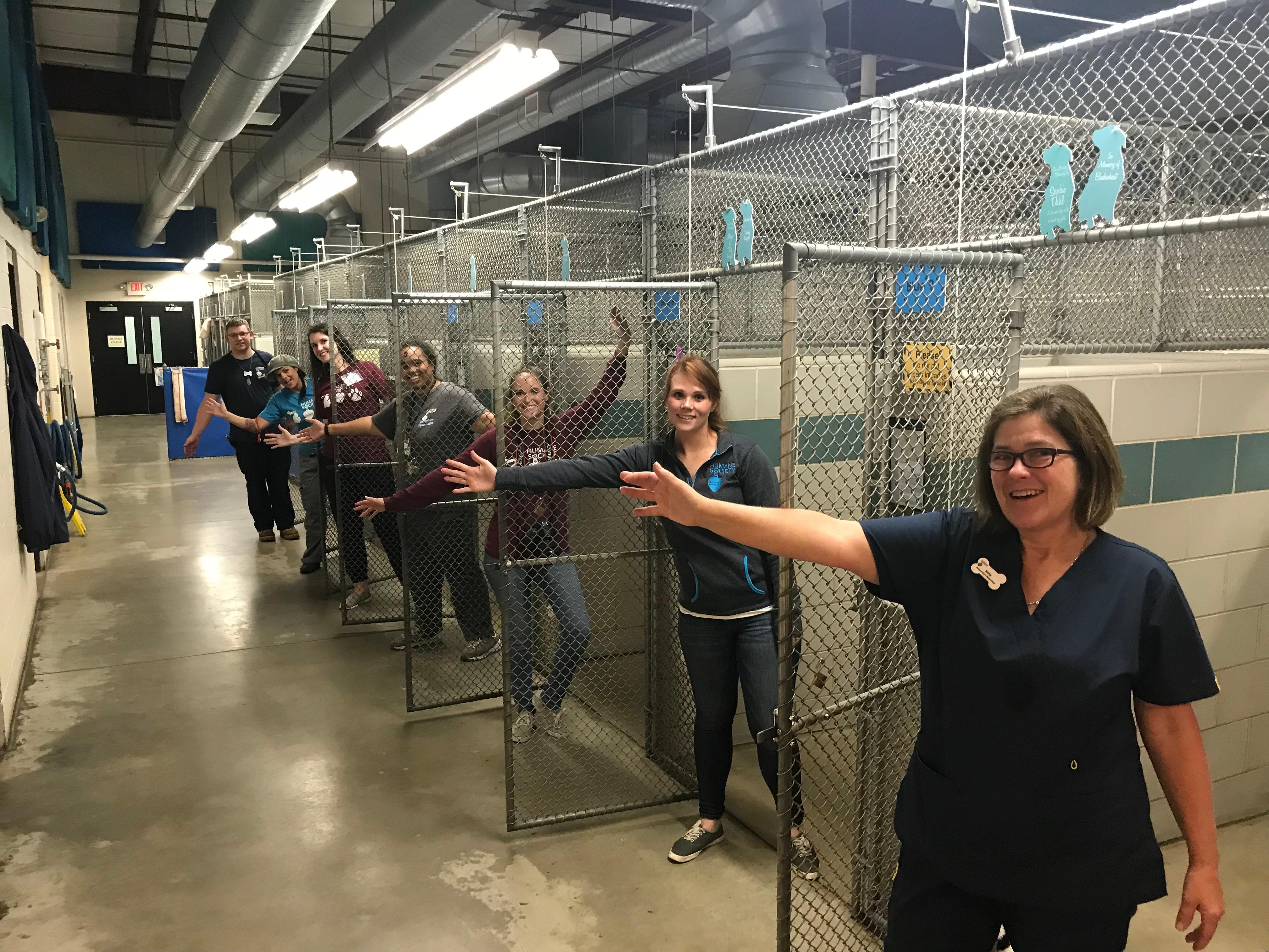 More than 2,000 pets found their forever home during the Empty the Shelters event.