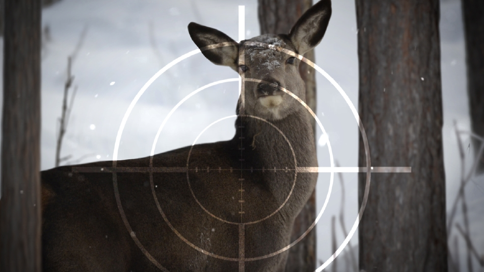 Hunters shoot nearly 6,000 deer in Ohio youth gun season ...