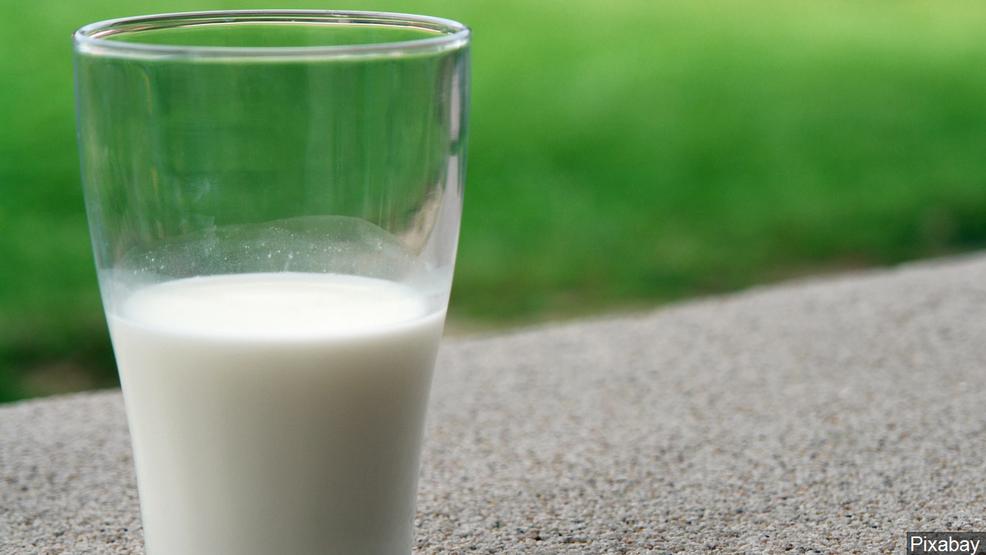 Peta Says Cows Milk Is Symbol Of White Supremacists Komo