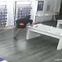 Burglars take electronics and safe from Metro PCS store in Titusville