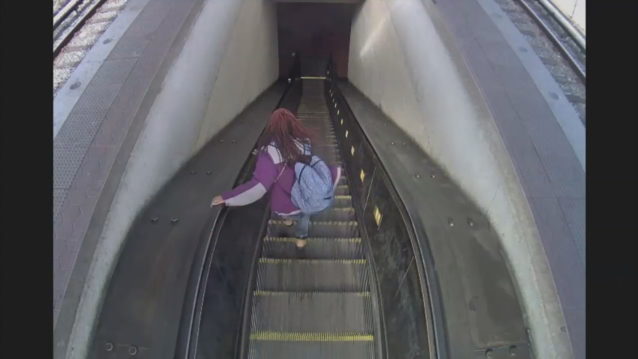 Metro surveillance video. (WMATA)