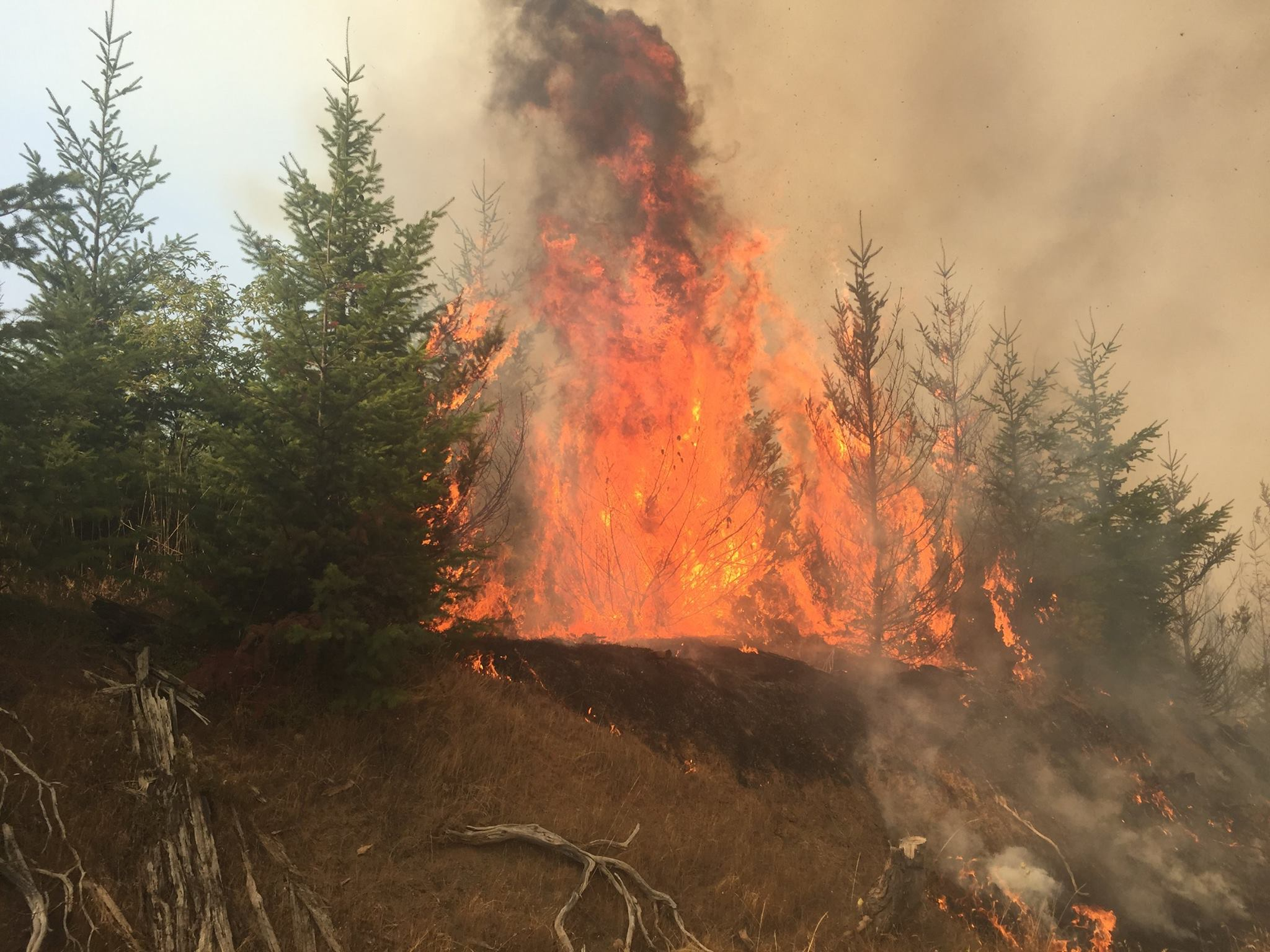 The Horse Prairie Fire was detected Saturday, August 26. People who live near the fire were told to evacuate on Tuesday. The cause is still under investigation.