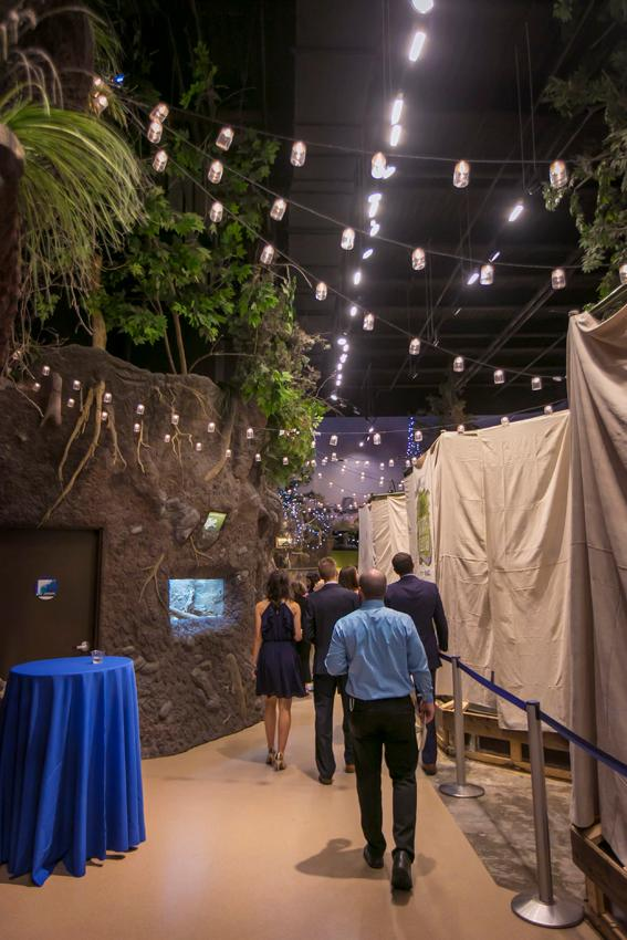 Nauti Nite was held on Friday, October 5 at the Newport Aquarium. The event is held every year to raise money for the WAVE Foundation. Proceeds from the event go towards ocean conservation efforts and youth education programs. / Image: Mike Bresnen Photography// Published: 10.6.18