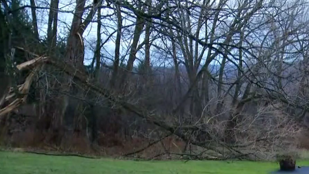 Strong Wind Causes Some Damage Across Region Wstm