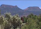 KUTV Bears Ears wide 042617.JPG