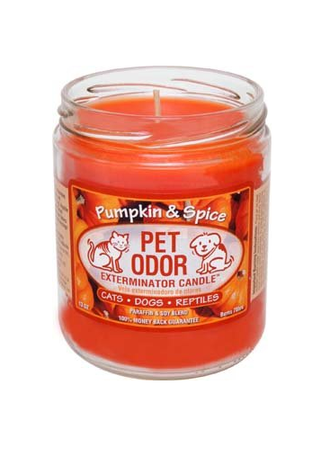 Pumpkin Spice Pet Odor Exterminator Candle, $8.99 (Image courtesy of Amazon){&amp;nbsp;}<p></p>