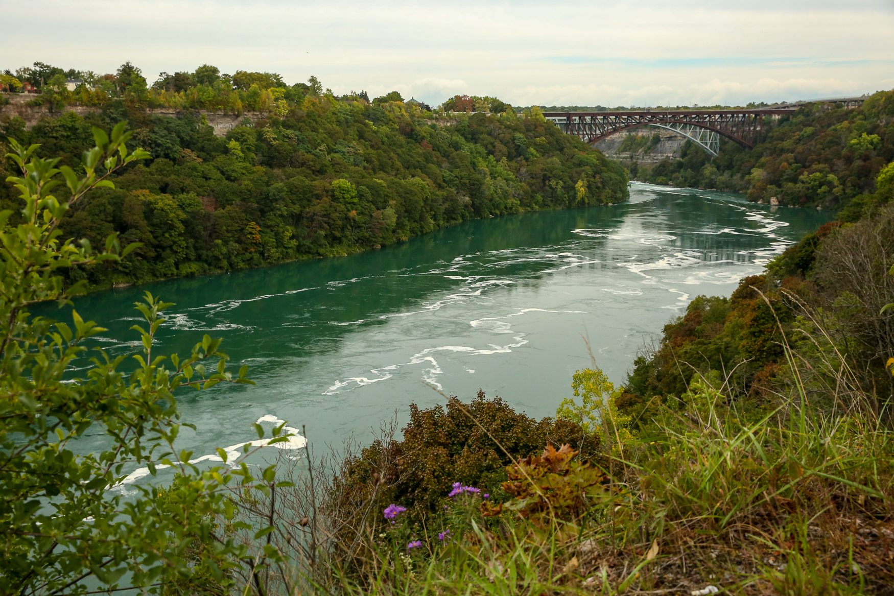 The hiking trails of Niagara Gorge.{ }(Amanda Andrade-Rhoades/DC Refined)