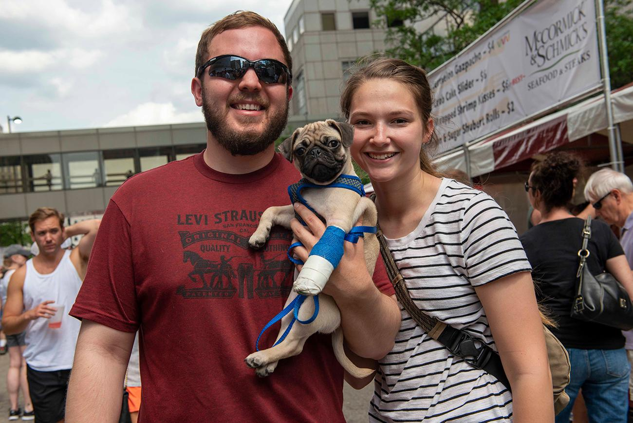 A little pug with a hurt paw still makes it out to Taste of Cincinnati! / Image: Joe Simon