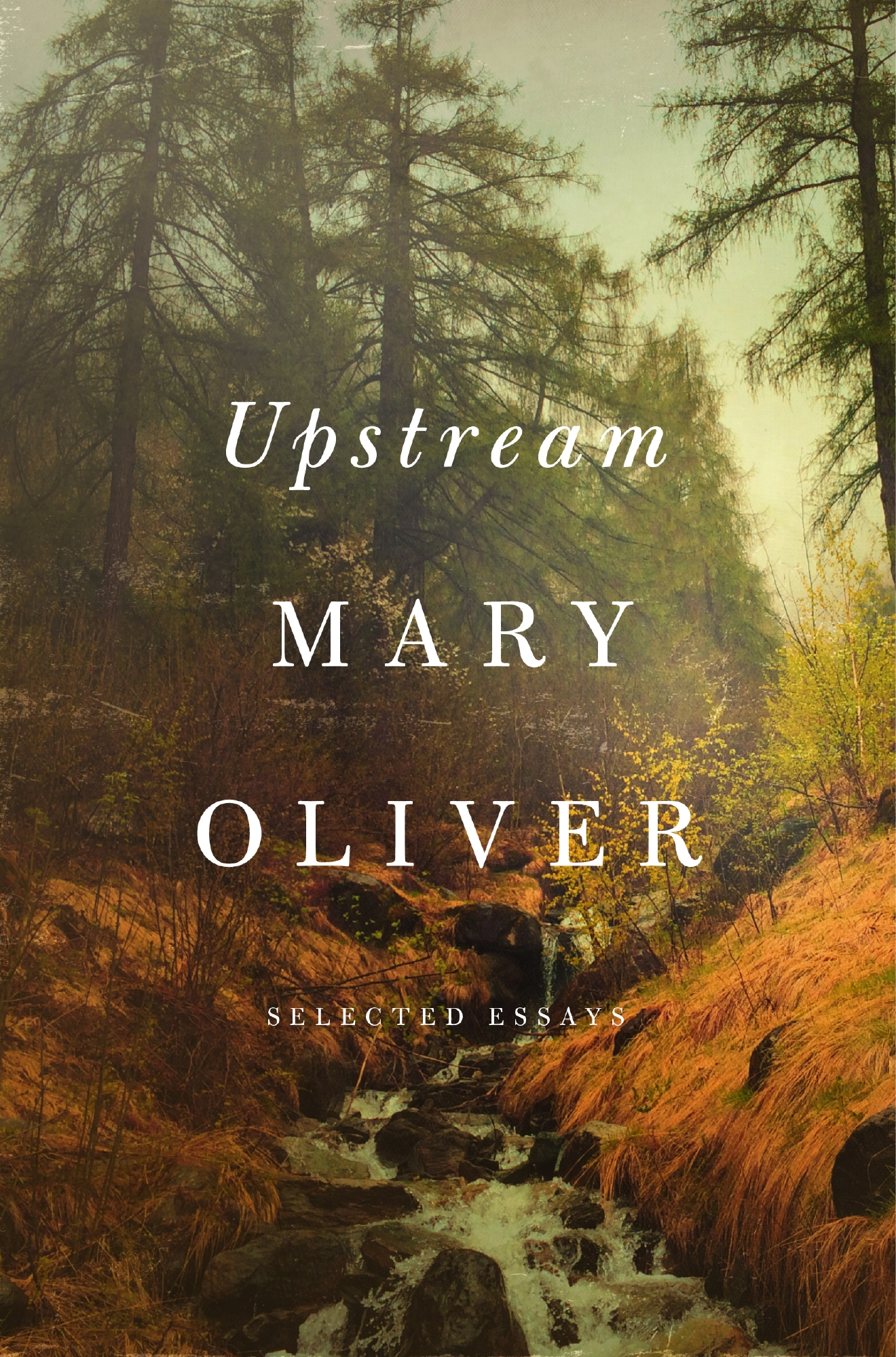 """Upstream: Selected Essays"" by Mary Oliver (Image: University Book Store / Penguin)"