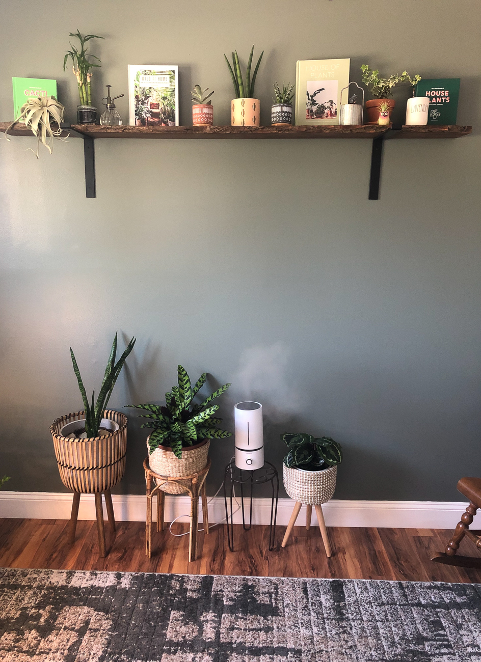 "Megan Huffmeyer (IG: @meg_plantagram) from Colerain Township / ""I have always loved plants and had a small collection that I started a few years ago. As I feel is true for many, my collection expanded even more throughout COVID. My collection started with mainly succulents and cacti, but after seeing all of the variety of calatheas, I wanted to push myself to take care of something more finicky. My inspiration for my room came from wanting to combine my love for the outdoors with my compassion for all living things. With working on a crisis team and dealing with additional stress from COVID, I also felt this sense of urgency to create a space for myself to where I could decompress and unwind within the safety of my home, given limited access to the outdoors. I've also been inspired by the many bloggers out there who share their stories and inspirations, like Hilton Carter and his book Wild at Home. My favorite part about this room is sitting in my rocking chair in the corner and reading up on my current plants. I won't lie, I also spend hours gasping in excitement when I see new growths."" / Image courtesy of Megan Huffmeyer // Published: 6.13.20"