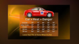 Heat can spell danger for your pets, especially inside cars