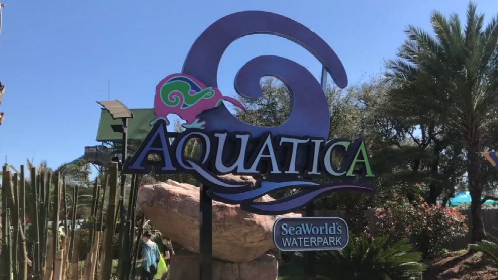 Incidents At Seaworld Parks: Park-goer Rushed To Hospital After Near-drowning At Sea