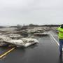 Ice jams cover pair of state routes in southern Jefferson County