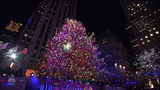 After the lights dim, Rockefeller Christmas trees still give