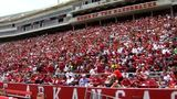 SEC asks Arkansas to exempt stadiums, arenas from gun law