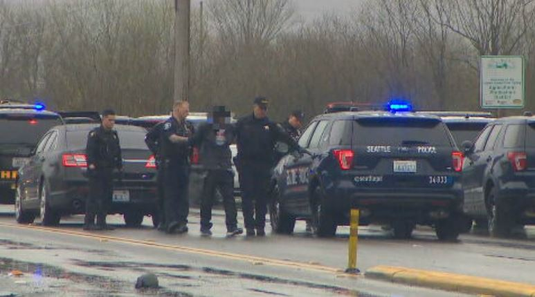 Police bring their suspect who led them on a chase across south King County to a patrol car (KOMO Photo)