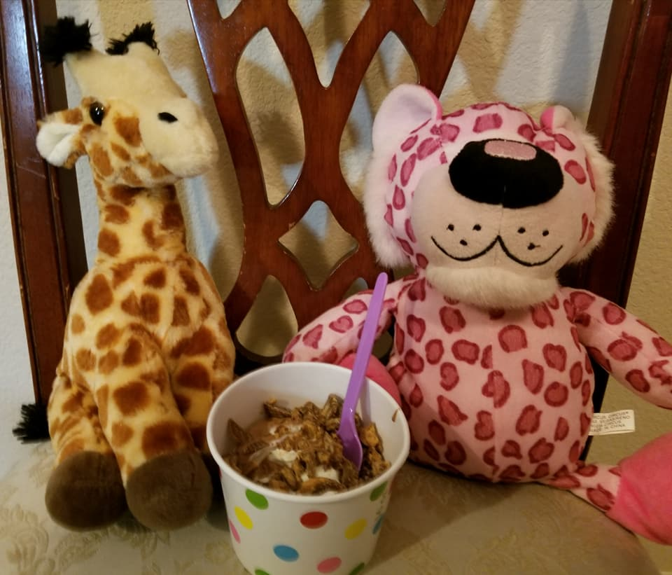 Clovis woman on a mission to reunite stuffed animals with their 'best friend.' Getting some frozen yogurt. (Brenda Bibb Kirby via KMPH)<p></p>